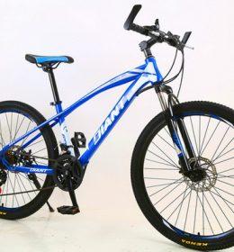 Sepeda Gunung MTB Import Terbaik_2