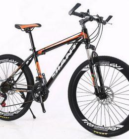 Sepeda Gunung MTB Import Terlaris