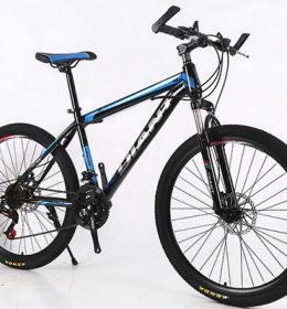 Sepeda Gunung MTB Import