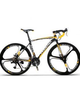 Sepeda Phoenix 21 Speed Asli Import